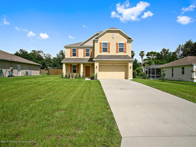 10184 Horizon Drive, Spring Hill, FL 34608 (MLS #2194516) :: The Hardy Team - RE/MAX Marketing Specialists