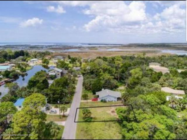 4129 Pine Dale Court, Hernando Beach, FL 34607 (MLS #2194672) :: The Hardy Team - RE/MAX Marketing Specialists