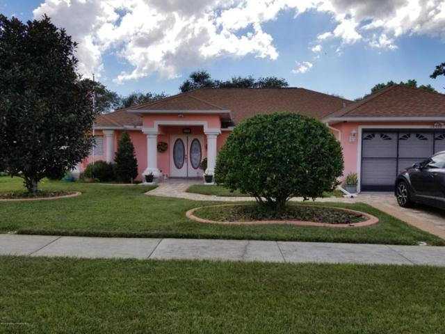 10320 Audie Brook Drive, Spring Hill, FL 34608 (MLS #2194686) :: The Hardy Team - RE/MAX Marketing Specialists