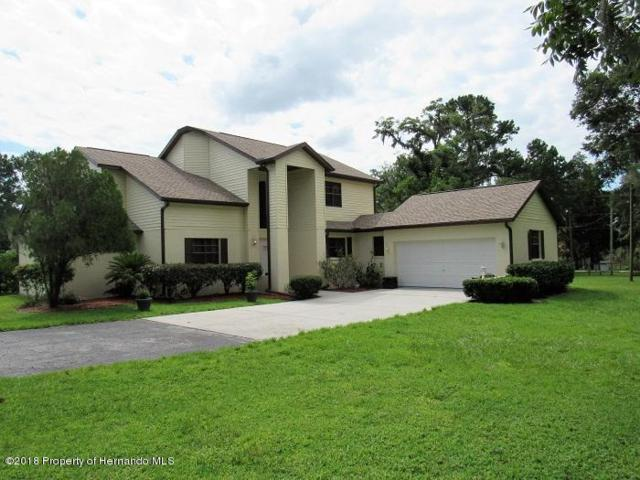 14308 Snow Memorial Highway, Brooksville, FL 34601 (MLS #2194768) :: The Hardy Team - RE/MAX Marketing Specialists