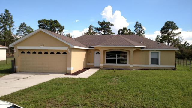 13204 Paxton Avenue, Weeki Wachee, FL 34614 (MLS #2194770) :: The Hardy Team - RE/MAX Marketing Specialists