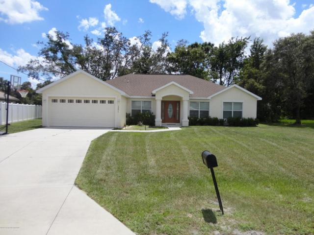 3291 Guava Lane, Spring Hill, FL 34609 (MLS #2194790) :: The Hardy Team - RE/MAX Marketing Specialists