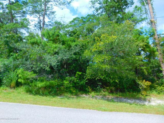 0 Owl Road, Weeki Wachee, FL 34614 (MLS #2194832) :: The Hardy Team - RE/MAX Marketing Specialists
