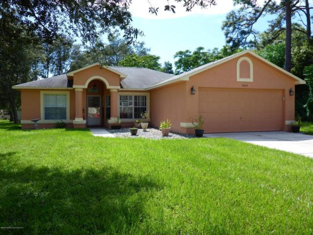 5253 Enfield Avenue, Spring Hill, FL 34608 (MLS #2194914) :: The Hardy Team - RE/MAX Marketing Specialists