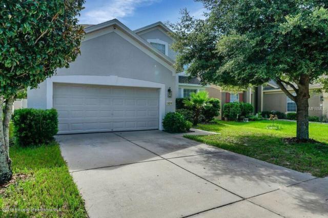 14218 Wake Robin Drive, Brooksville, FL 34604 (MLS #2195025) :: The Hardy Team - RE/MAX Marketing Specialists