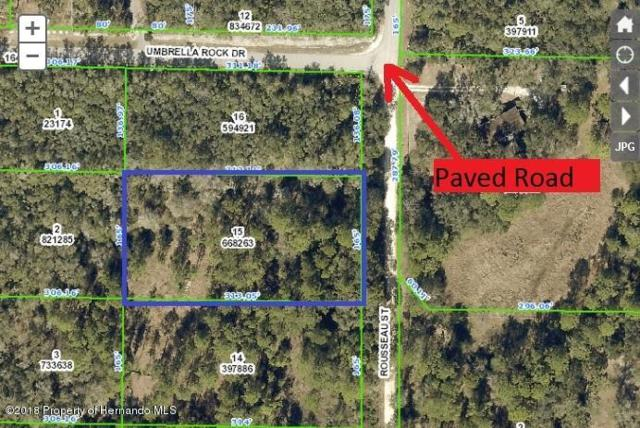 0 Rousseau, Webster, FL 33597 (MLS #2195198) :: The Hardy Team - RE/MAX Marketing Specialists