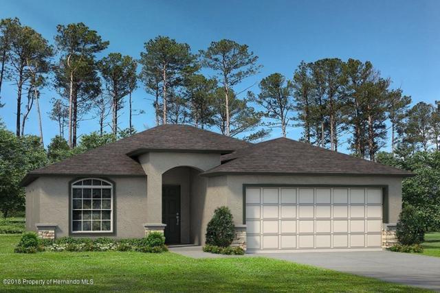 13288 Quigley Avenue, Weeki Wachee, FL 34614 (MLS #2195293) :: The Hardy Team - RE/MAX Marketing Specialists