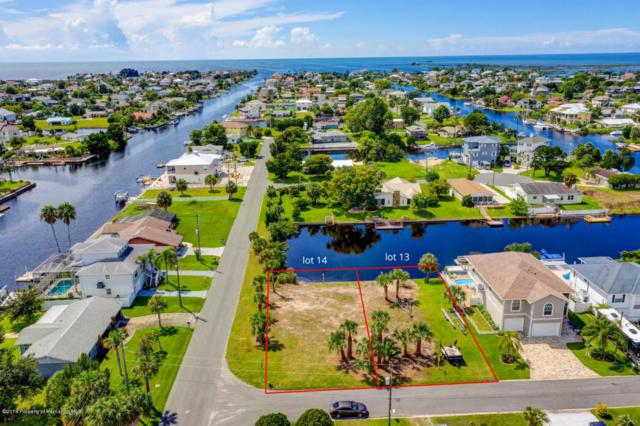 Lots 13-14 2nd Isle Drive, Hernando Beach, FL 34607 (MLS #2195397) :: The Hardy Team - RE/MAX Marketing Specialists