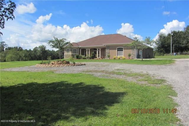6413 Emerson Road, Brooksville, FL 34601 (MLS #2195402) :: The Hardy Team - RE/MAX Marketing Specialists