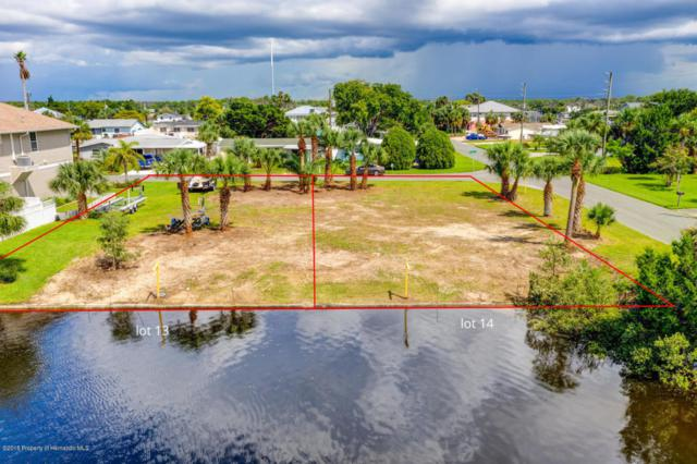 Lot 14 2nd Isle Drive, Hernando Beach, FL 34607 (MLS #2195404) :: The Hardy Team - RE/MAX Marketing Specialists
