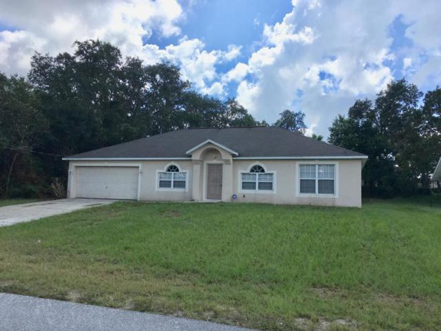 11102 Mayflower Road, Spring Hill, FL 34608 (MLS #2195418) :: The Hardy Team - RE/MAX Marketing Specialists