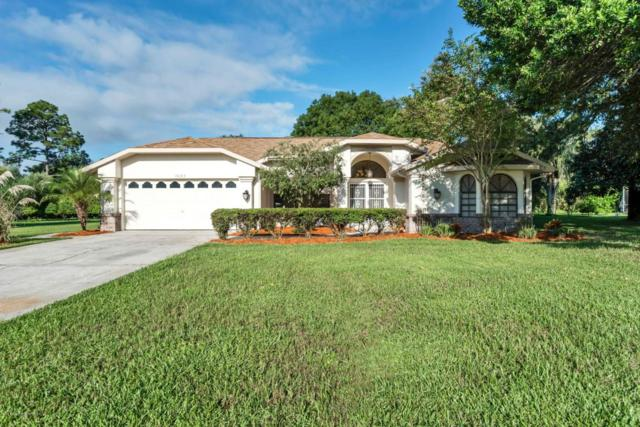 13083 Huntington Woods Avenue, Spring Hill, FL 34609 (MLS #2195494) :: The Hardy Team - RE/MAX Marketing Specialists
