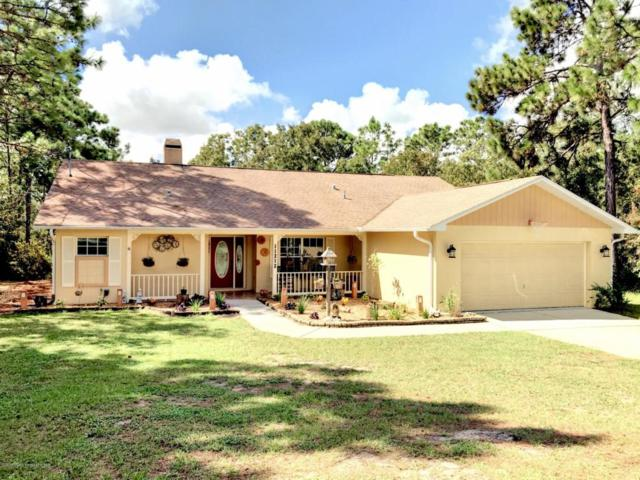 11212 Flock Avenue, Weeki Wachee, FL 34613 (MLS #2195498) :: The Hardy Team - RE/MAX Marketing Specialists