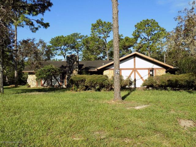 16023 Magdalena Road, Weeki Wachee, FL 34614 (MLS #2195538) :: The Hardy Team - RE/MAX Marketing Specialists
