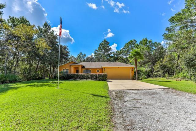 10478 Gannet Avenue, Weeki Wachee, FL 34613 (MLS #2195548) :: The Hardy Team - RE/MAX Marketing Specialists