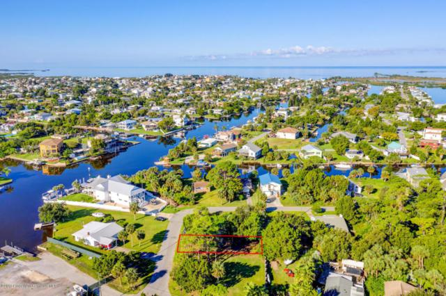 Lot 12 Pine Dale Court, Hernando Beach, FL 34607 (MLS #2195617) :: The Hardy Team - RE/MAX Marketing Specialists