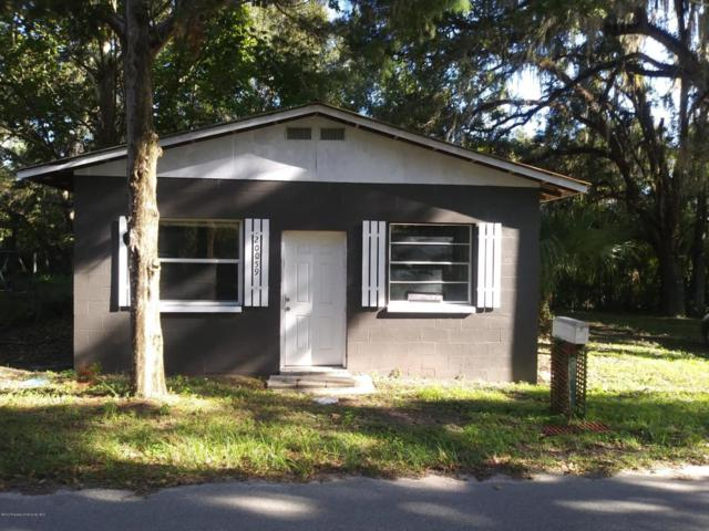 20059 Manecke Road, Brooksville, FL 34601 (MLS #2195659) :: The Hardy Team - RE/MAX Marketing Specialists