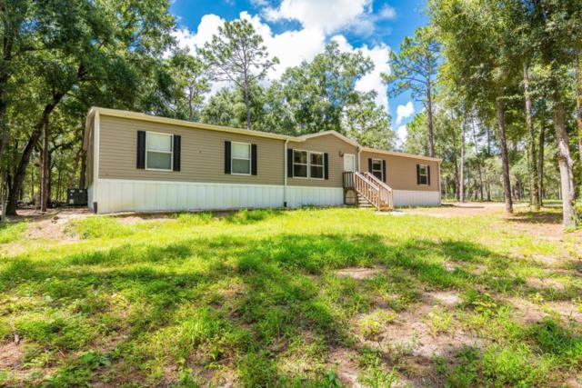 16481 Oakview Drive, Brooksville, FL 34601 (MLS #2195708) :: The Hardy Team - RE/MAX Marketing Specialists
