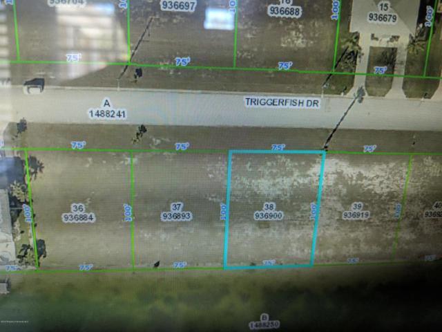 LOT 38 Triggerfish Drive, Hernando Beach, FL 34607 (MLS #2195779) :: The Hardy Team - RE/MAX Marketing Specialists