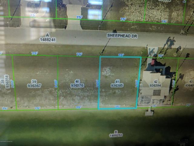 LOT 41 Sheephead Drive, Hernando Beach, FL 34607 (MLS #2195781) :: The Hardy Team - RE/MAX Marketing Specialists