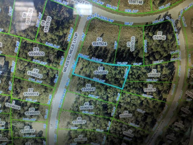 LOT 51 Majestic Hills Loop, Brooksville, FL 34601 (MLS #2195784) :: The Hardy Team - RE/MAX Marketing Specialists