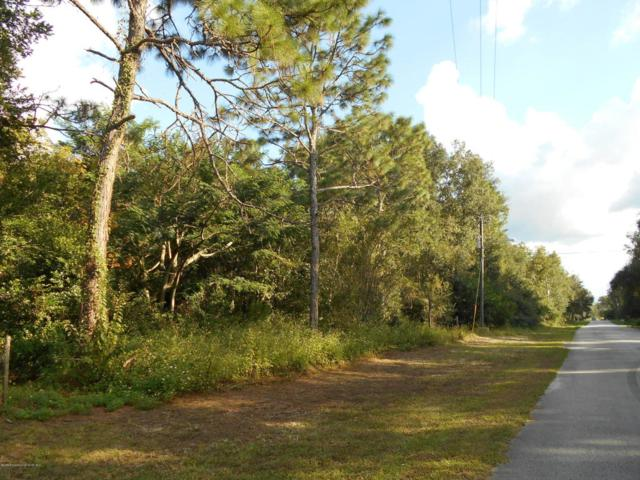 0 Cresap, Brooksville, FL 34613 (MLS #2195790) :: The Hardy Team - RE/MAX Marketing Specialists