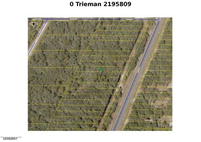 0 Treiman, Webster, FL 33597 (MLS #2195809) :: The Hardy Team - RE/MAX Marketing Specialists