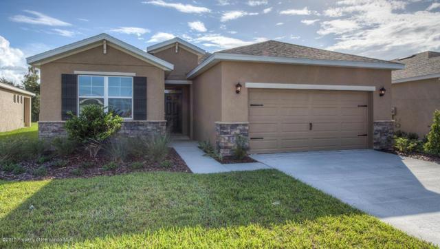 17741 Garsalaso Circle, Brooksville, FL 34604 (MLS #2195828) :: The Hardy Team - RE/MAX Marketing Specialists