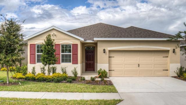 17719 Garsalaso Circle, Brooksville, FL 34604 (MLS #2195834) :: The Hardy Team - RE/MAX Marketing Specialists
