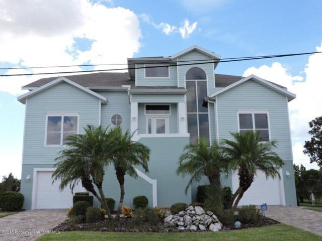 3375 Bluefish Drive, Hernando Beach, FL 34607 (MLS #2195835) :: The Hardy Team - RE/MAX Marketing Specialists
