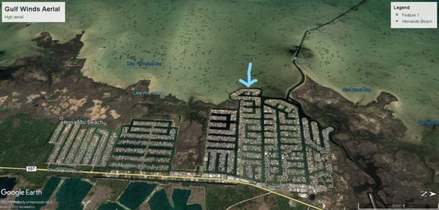 3138 Gulf Winds Circle, Hernando Beach, FL 34607 (MLS #2195852) :: The Hardy Team - RE/MAX Marketing Specialists