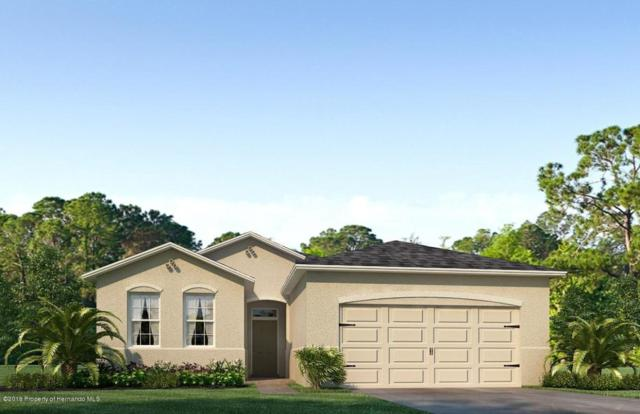 13739 Hunting Creek Place, Spring Hill, FL 34609 (MLS #2195864) :: The Hardy Team - RE/MAX Marketing Specialists