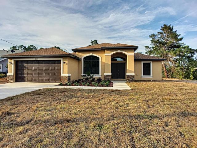 333 Waterfall Drive, Spring Hill, FL 34608 (MLS #2195921) :: The Hardy Team - RE/MAX Marketing Specialists