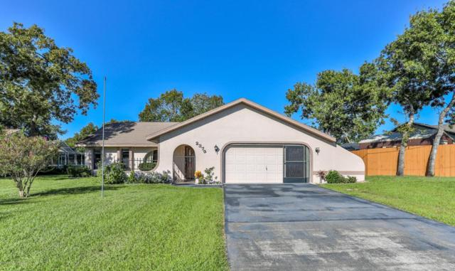 2373 Restmere Lane, Spring Hill, FL 34609 (MLS #2195926) :: The Hardy Team - RE/MAX Marketing Specialists