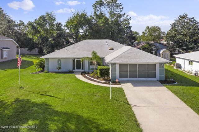 11256 Portsmouth Street, Spring Hill, FL 34609 (MLS #2195961) :: The Hardy Team - RE/MAX Marketing Specialists