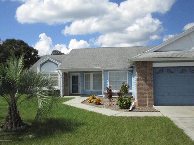 3514 Ambassador Avenue, Spring Hill, FL 34609 (MLS #2195966) :: The Hardy Team - RE/MAX Marketing Specialists