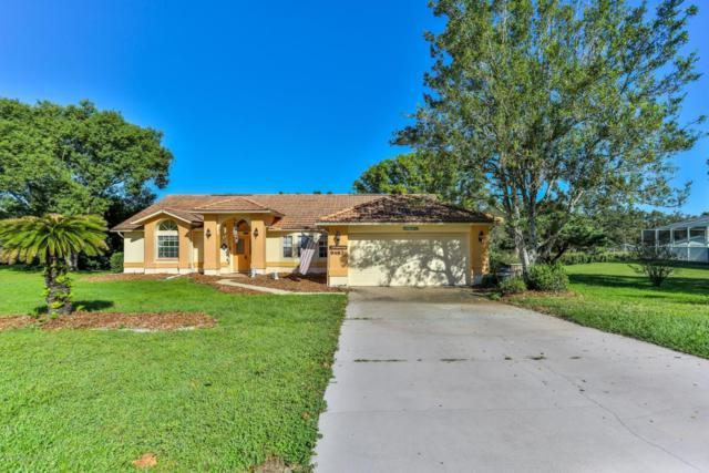 9487 Dunkirk Road, Spring Hill, FL 34608 (MLS #2196005) :: The Hardy Team - RE/MAX Marketing Specialists