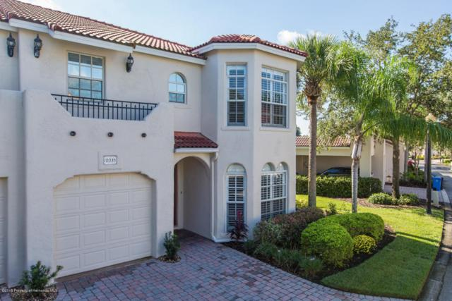 10335 Saville Rowe Lane, Tampa, FL 33626 (MLS #2196138) :: The Hardy Team - RE/MAX Marketing Specialists
