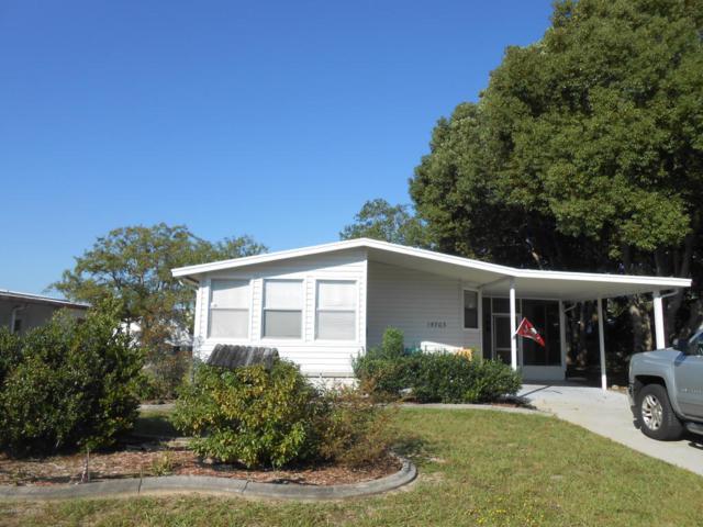 15703 Brookridge Boulevard, Brooksville, FL 34613 (MLS #2196140) :: The Hardy Team - RE/MAX Marketing Specialists