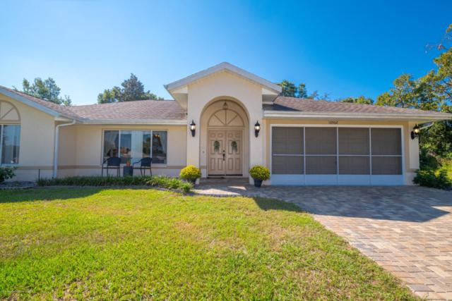 10502 Sheffield Road, Spring Hill, FL 34608 (MLS #2196146) :: The Hardy Team - RE/MAX Marketing Specialists