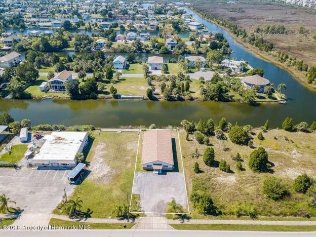 3387 Shoal Line Boulevard, Hernando Beach, FL 34607 (MLS #2196244) :: The Hardy Team - RE/MAX Marketing Specialists