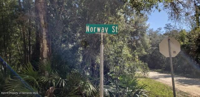 0000 Norway, Webster, FL 33597 (MLS #2196264) :: The Hardy Team - RE/MAX Marketing Specialists