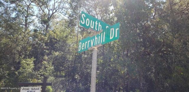 0000 Berryhill, Webster, FL 33597 (MLS #2196269) :: The Hardy Team - RE/MAX Marketing Specialists