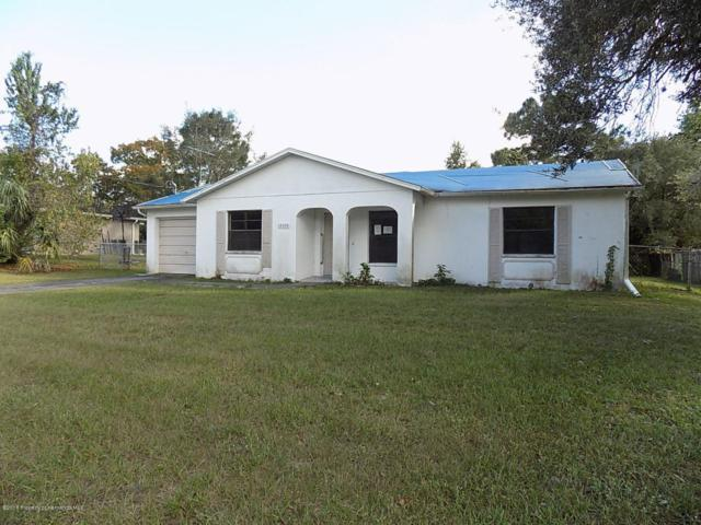 12204 Shafton Road, Spring Hill, FL 34608 (MLS #2196292) :: The Hardy Team - RE/MAX Marketing Specialists