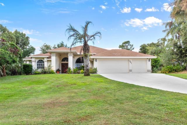 401 Oriana Drive, Spring Hill, FL 34609 (MLS #2196296) :: The Hardy Team - RE/MAX Marketing Specialists