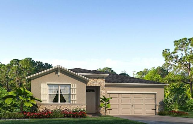 13661 Paddington Place, Spring Hill, FL 34609 (MLS #2196440) :: The Hardy Team - RE/MAX Marketing Specialists