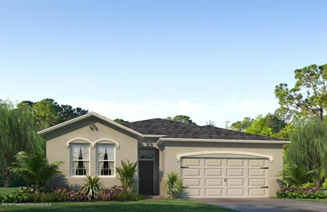 17663 Garsalaso Circle, Brooksville, FL 34604 (MLS #2196593) :: The Hardy Team - RE/MAX Marketing Specialists