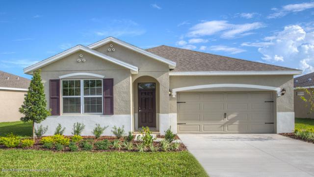 17671 Garsalaso Circle, Brooksville, FL 34604 (MLS #2196595) :: The Hardy Team - RE/MAX Marketing Specialists