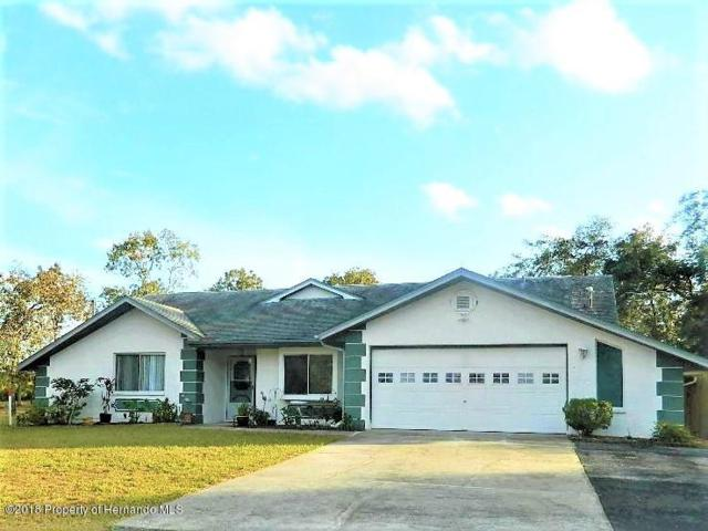 10094 May Gold Lane, Spring Hill, FL 34608 (MLS #2196633) :: The Hardy Team - RE/MAX Marketing Specialists