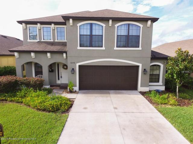 14298 Saltby Place, Spring Hill, FL 34609 (MLS #2196637) :: The Hardy Team - RE/MAX Marketing Specialists